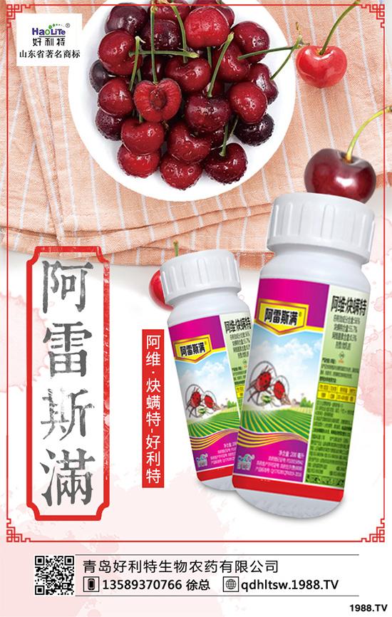红蜘蛛虫害高发期,来看看这个防治手段,别被杀的措手不及!