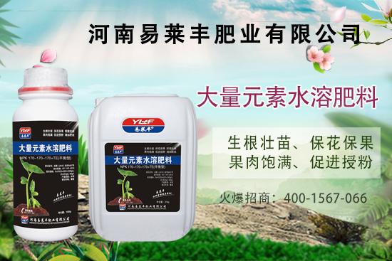 大量元素水溶肥如何施肥?大量元素水溶肥使用技巧,量少更高效!