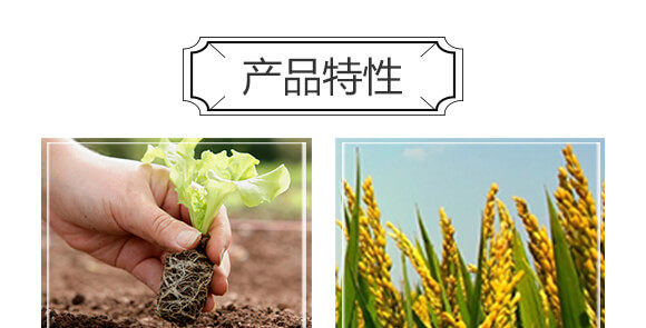 含氨基酸水溶肥料-裕丹白-欧格纳科_04