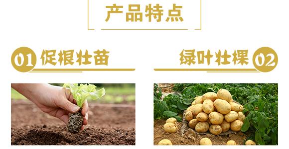 颗粒硼-雷效-嘉田农业_05