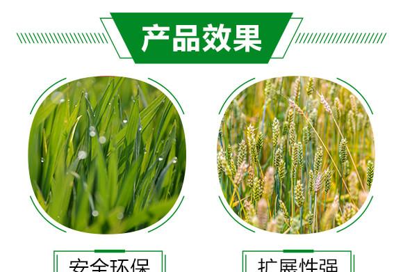 农用有机硅助剂-速展(瓶装)-爱农斯达_05