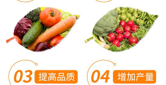 大量元素水溶肥17-17-17-九大簋-新田龙_06