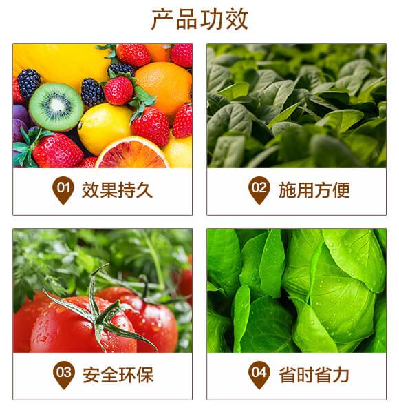 蔬菜瓜果专用移栽片-鲨威-高晟_04