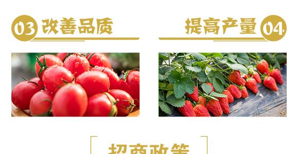 颗粒硼-雷效-嘉田农业_06