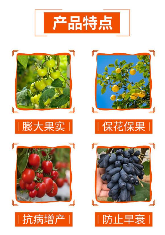 膨果型含腐殖酸大量元素缓释复合液肥-果多多-科利农_04