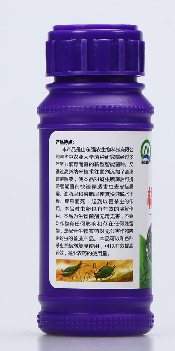 抗性蚜虫专用菌剂-棉无蚜-强农生物4
