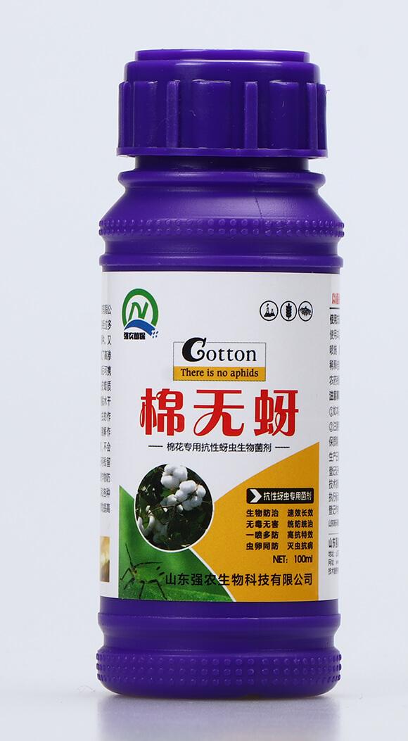 抗性蚜虫专用菌剂-棉无蚜-强农生物2