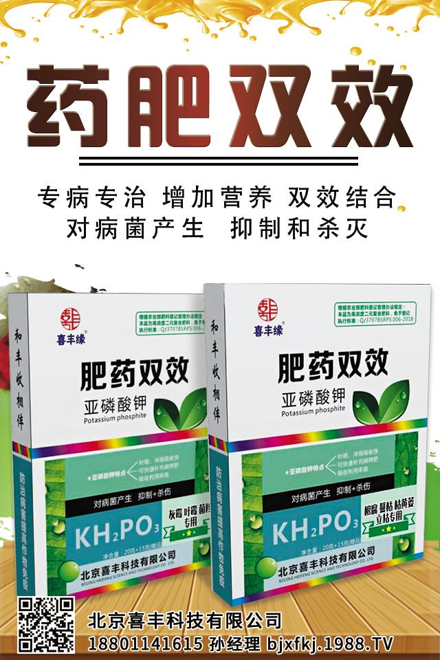 北京喜丰科技有限公司
