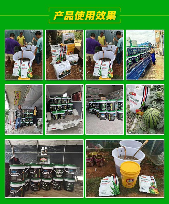 新疆肥肽子生態肥業有限公司