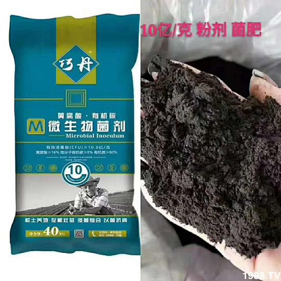 改良土壤,这些方法管用!