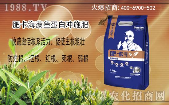 作物生根缓慢,植株生长受阻?这个肥,爆发式生根增产增收看得见!
