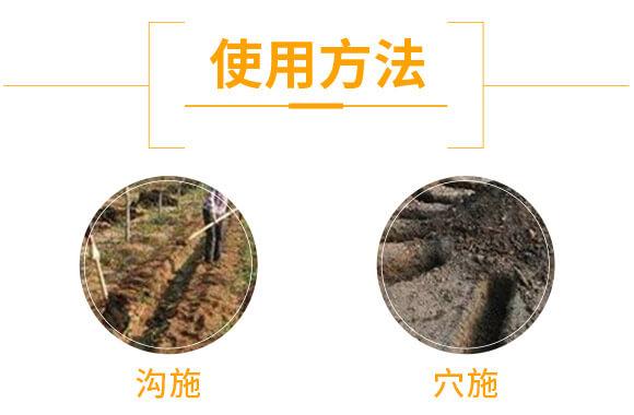 鱼藻微生物肥-新田龙_05