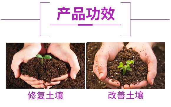 微生物菌肥-生・地力-新田龙_05