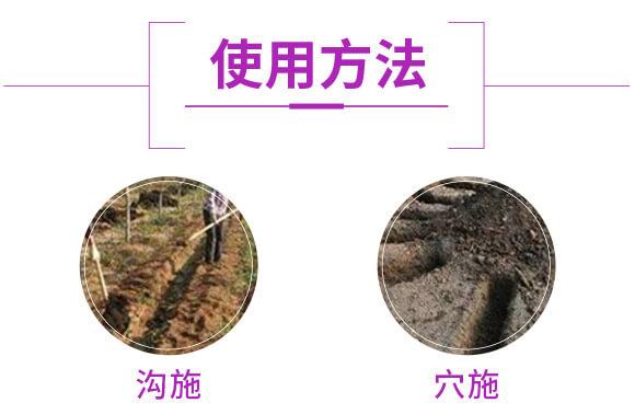 微生物菌肥-生・地力-新田龙_04