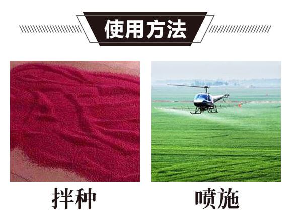碳氢核肥-金藻门-碳氢国际_05
