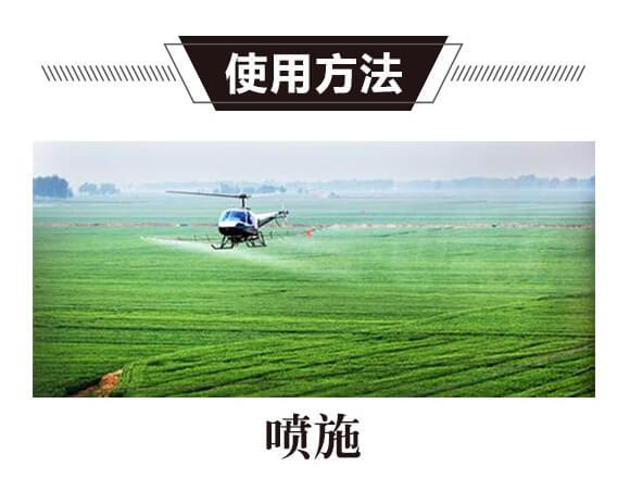 碳氢核肥-红藻门-碳氢国际_05