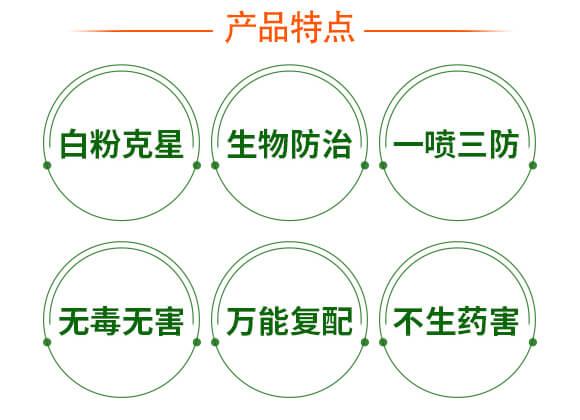 硫磺悬浮液体替代品-战粉・硫-强农生物_04