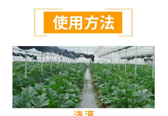 微生物菌肥-橘满园-奥利恩_04