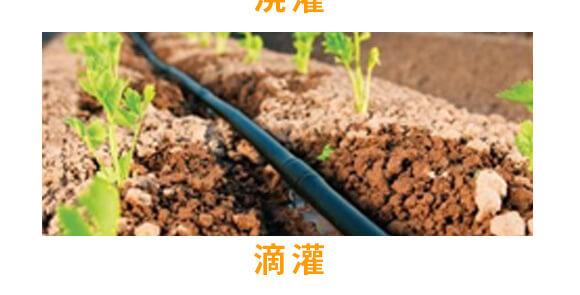 微生物菌肥-橘满园-奥利恩_05