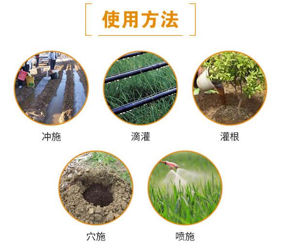 黑金-日正农业_06