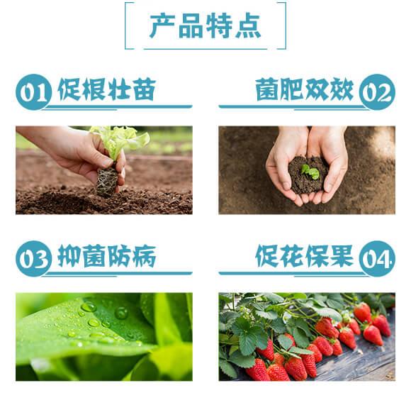 复合微生物肥料-墨靓-民尔生物_03