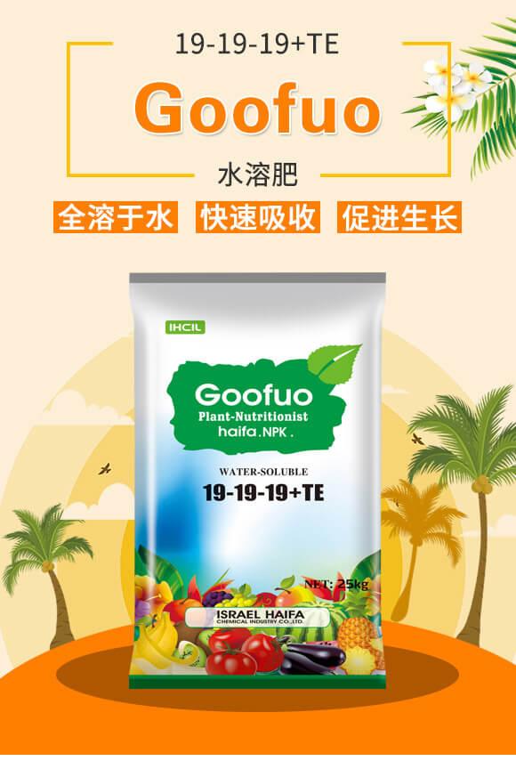 Goofuo水溶肥19-19-19+TE_01