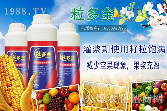 水稻灌浆期要注意哪些重点?水稻灌浆期施肥技巧!高产必备!