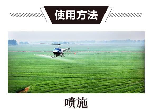 碳氢核肥-蓝藻门-碳氢国际_11