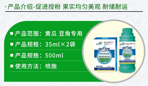 黄瓜、豆角专用含氨基酸水溶肥料-伊力奇-科德宝3