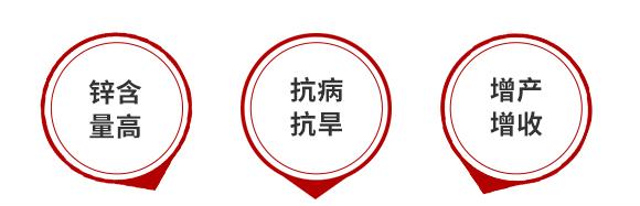 锌奇力(1000g)-叶硕-汤姆生5