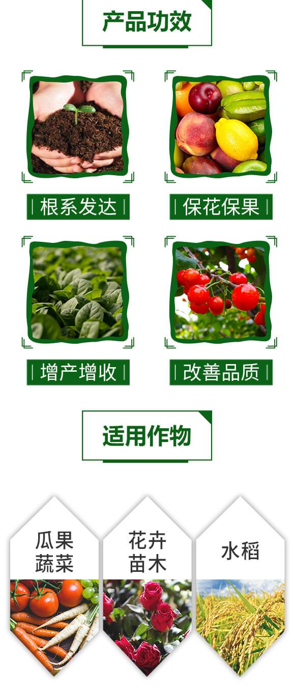 含氨基酸水溶肥料-速绿-天叶生物_04