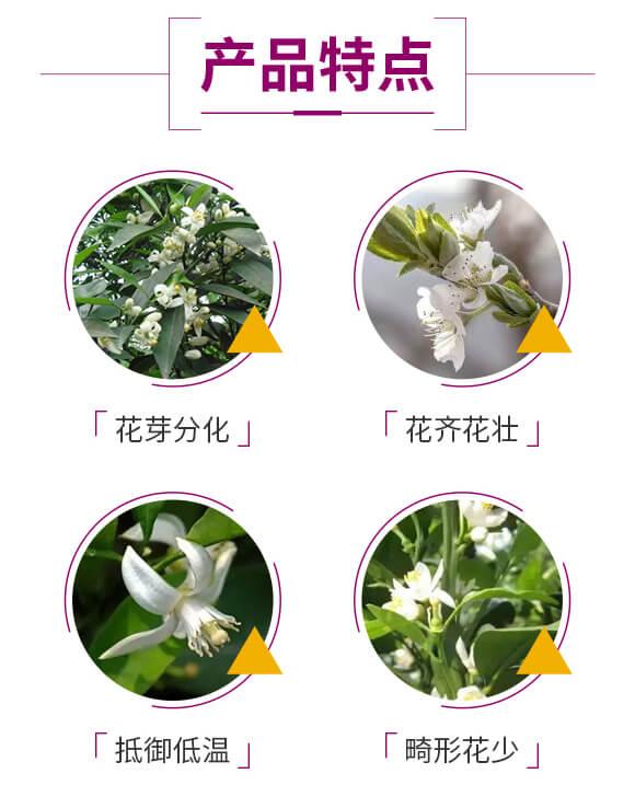 大量元素水溶肥-花培-硅禾生物_03