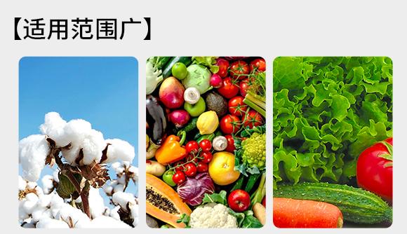 全水溶有机肥料-多肽生化黄腐酸-佰微生4