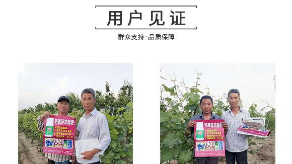 河南腾丰农业科技有限公司1_09