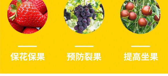 河南腾丰农业科技有限公司1_07