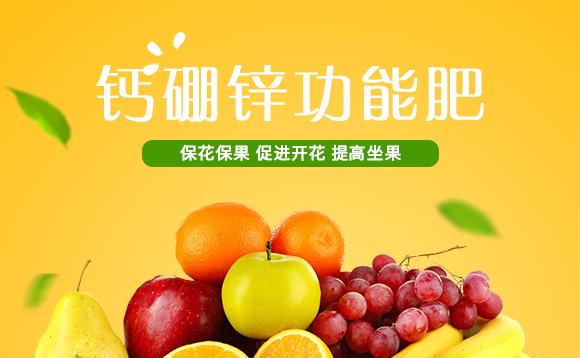 河南腾丰农业科技有限公司1_01