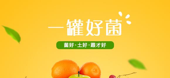 河南腾丰农业科技有限公司2_01