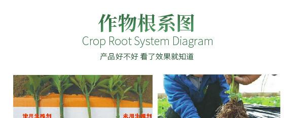 农夫稼园生物技术有限公司2_12