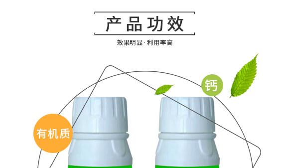 河南腾丰农业科技有限公司1_05