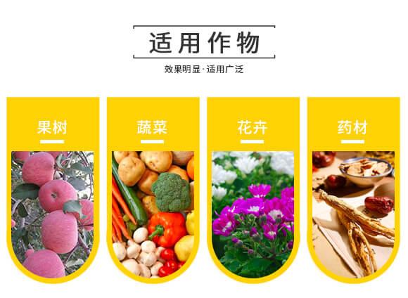 河南腾丰农业科技有限公司1_08
