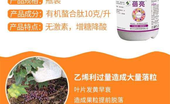 河南�v�S�r�I科技有限公司_03