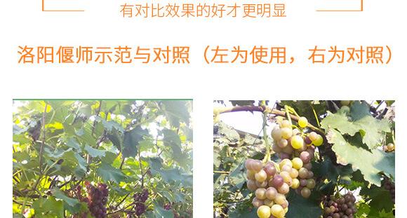 河南�v�S�r�I科技有限公司_09
