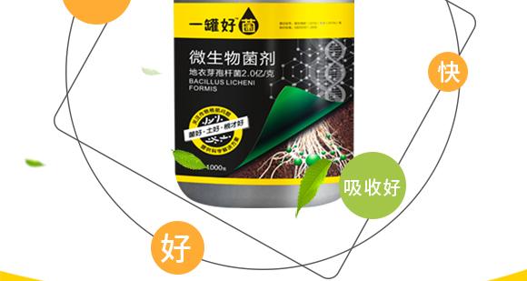 河南腾丰农业科技有限公司2_07