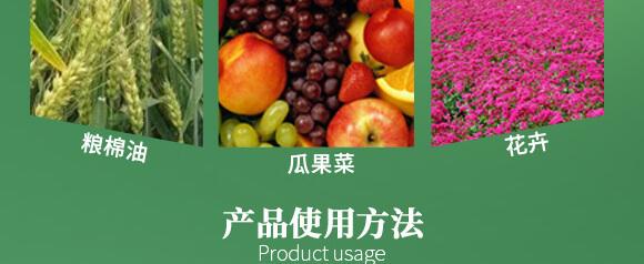 农夫稼园生物技术有限公司2_09