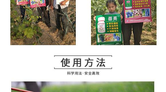河南腾丰农业科技有限公司1_11