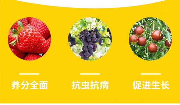河南腾丰农业科技有限公司2_08