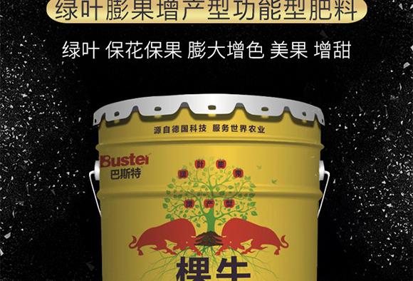绿叶膨果增产型功能型肥料-棵牛-巴斯特_02