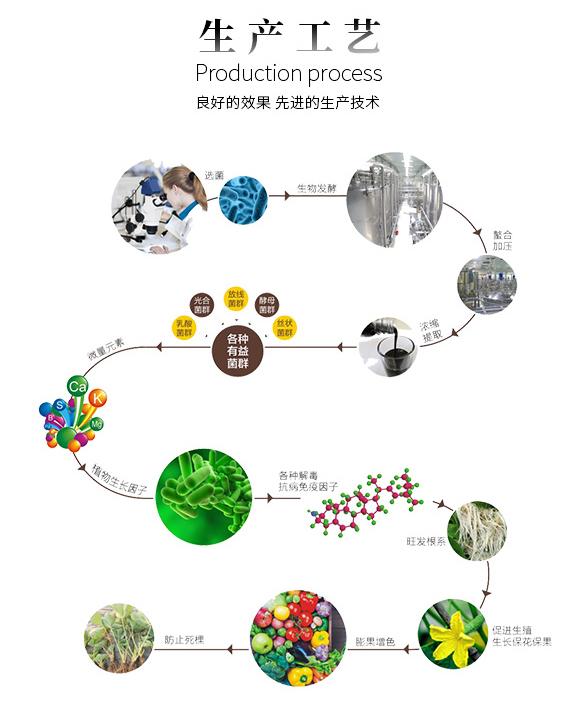 绿叶膨果增产型功能型肥料-棵牛-巴斯特_09