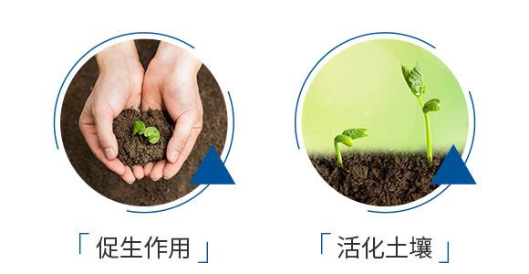 微生物菌剂-爵利兰博-爵利_06