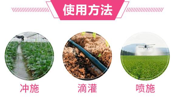 根动力(微生物菌肥)-新能生物_04